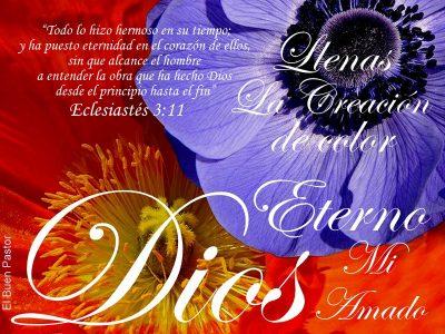 ECLESIASTÉS-3.11