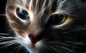 Imágenes - de - gatos - en - 3d - para - fondo de  pantalla