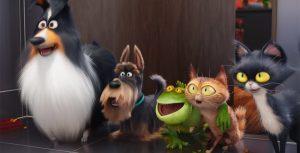 Imágenes - de - la - vida - secreta - de - tus - mascotas 4