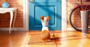 Imágenes - de - la - vida - secreta - de - tus - mascotas 5