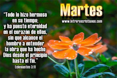 Martes-Eclesiastes-3-11