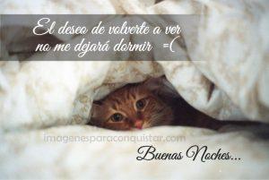 Palabras-Bonitas-de-Buenas-Noches-2.png