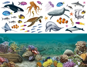 animales - acuáticos 4
