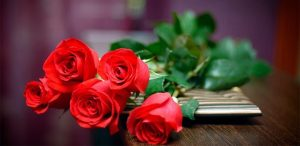 rosas-para-regalar