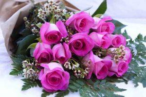 rosas-para-regalar 5