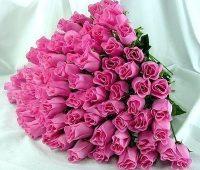 Imágenes lindas de rosas para regalar