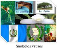 Imágenes de los símbolos patrios de guatemala