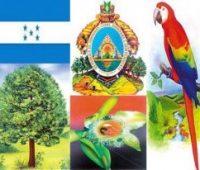 Imágenes de símbolos patrios de honduras