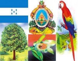 x260px-Simbolos_de_Honduras.JPG.pagespeed.ic.mNDbrXQCiC