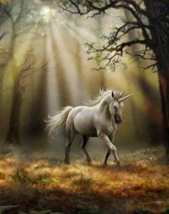 Gif de unicornios