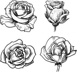 Dibujos-de-rosas-para-colorear-10