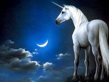 imagenes-de-unicornio