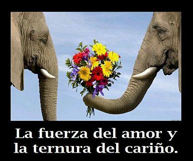 imagenes-romanticas-para-facebook-7