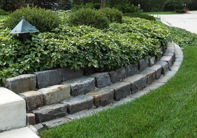 piedras-decorativa-jardin-piedras-decorativas-para-decorar-el-jardin