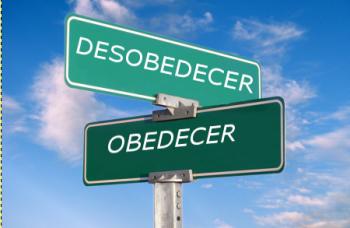 camino-obedecer