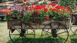 decoraciones-de-jardines-rusticos-2