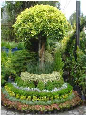 disenos-de-jardines-7
