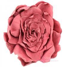 gardenias-de-colores-2