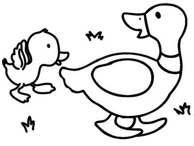 im489-Dibujos-para-colorear---animales-para-nilros-1