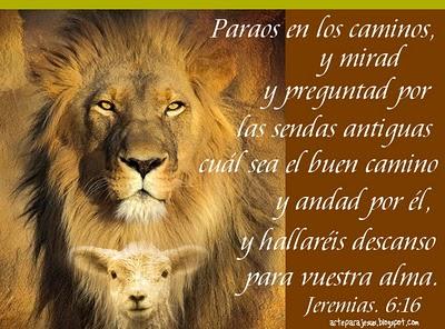 leon-y-cordero