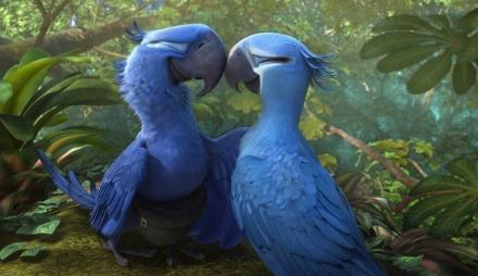 guacamayas azules de la pelicula de rio 2