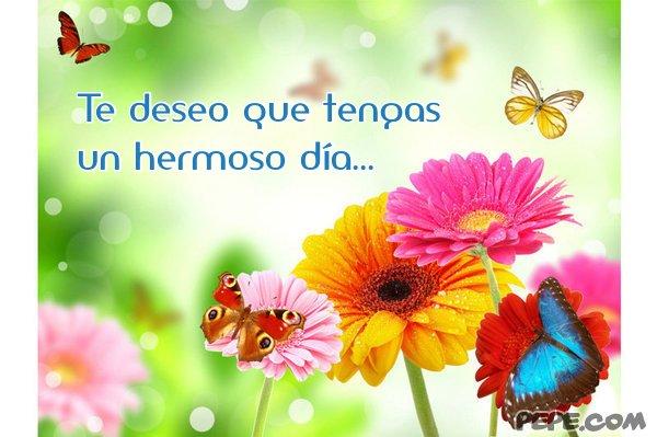 te_deseo_que_tengas_un_hermoso_dia_14