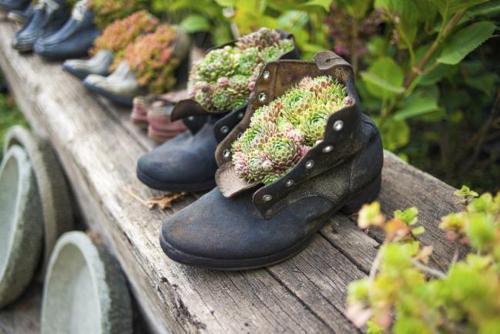 zapatos-viejos-reciclados-adornos-para-el-jardin-reciclados