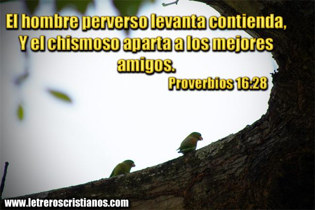 imagenes-con-proverbios-para-los-amigos-jpg-3