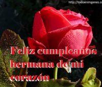 9 Imágenes hermosas de feliz cumpleaños hermana con rosas