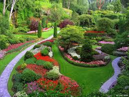jardines-de-flores-11