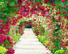 jardines-de-flores-15