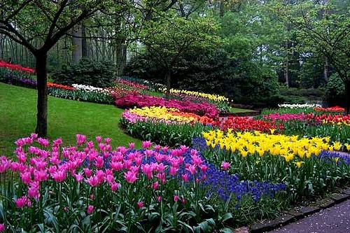 jardines-de-flores-4