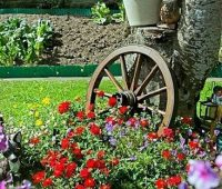 Imágenes de jardines de flores