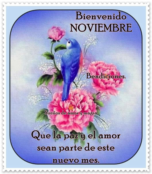noviembre_009
