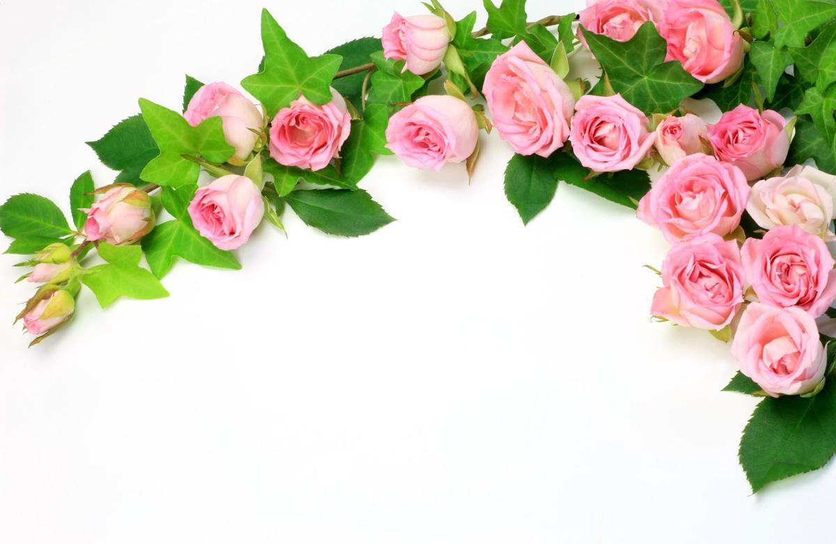 ramos-de-flores-rosas-lindas