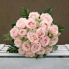 rosas-3