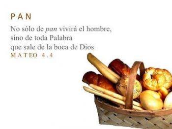 No solo de pan vivirá el hombre