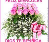 Imágenes de Feliz miércoles con rosas