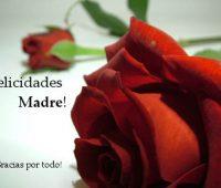 Imágenes de Rosas para mi madre