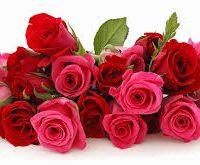 Imágenes de feliz mes de las flores