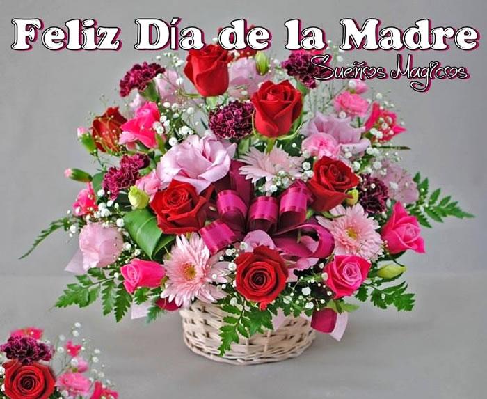 Imágenes De Rosas Rojas Para Mi Madre Descargar Imágenes
