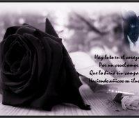 Imágenes de luto por un amigo