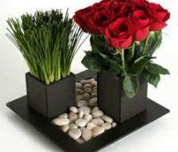 Imágenes de arreglos florales para hombres