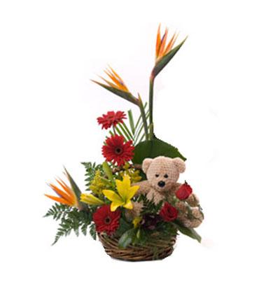 Imágenes De Arreglos Florales Para Hombres Descargar