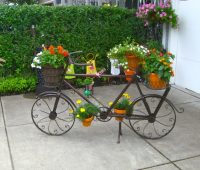 Jardines exteriores pequeños