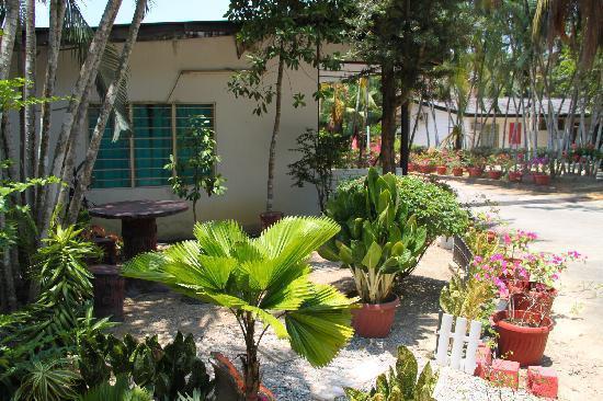 Jardines exteriores pequeños | Descargar imágenes gratis