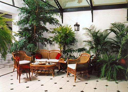 Jardines interiores para decorar | Descargar imágenes gratis