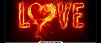 Imágenes con frases no renunciare a tu amor siempre te esperare
