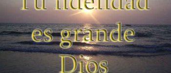 Imágenes cristianas con frases tu fidelidad es grande para ti