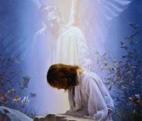 Imágenes de Jesús llorando en el huerto